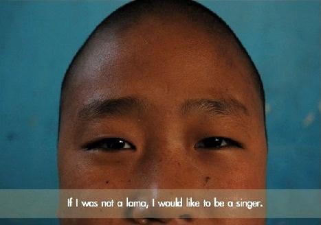 lamasinger