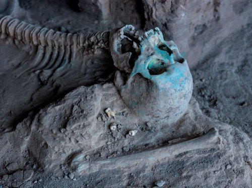 The ground at Mes Aynak is so rich in copper that rock and bones — like this skeleton found lying near a Buddhist shrine — are stained greenish-blue. © Simon Norfolk/National Geographic
