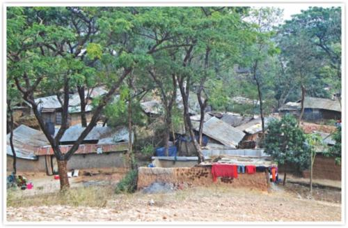 local land grabbers build several houses just beside Naoda Buruj, another archaeological site in the area. Photo: RABIUL HASAN